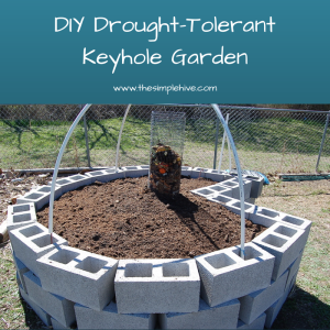 build your own drought-tolerant keyhole garden